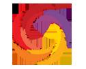 brainology Logo
